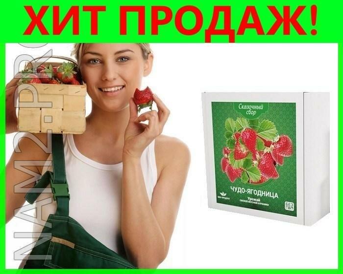Чудо-ягодница Сказочный сбор в Якутске