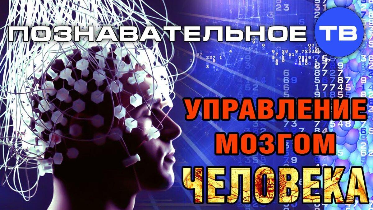 Сергей Савельев Управление мозгом человека Мозг  механизм для управления человеком А что управляет самим мозгом Почему люди не хотят думать Чем отличает мозг профессора от мозга извозчика Как