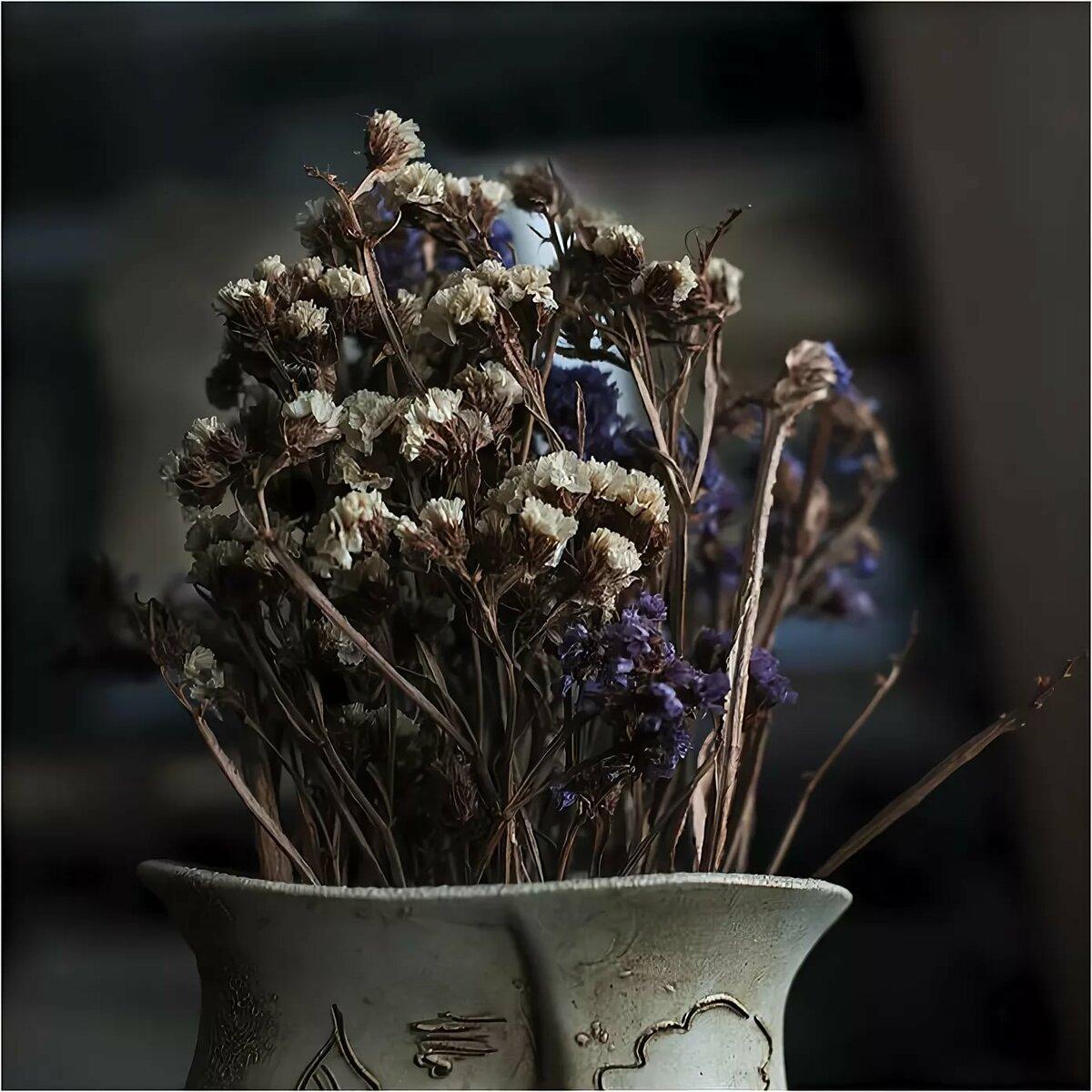 можно сухоцветы в природе фото раньше лацканы