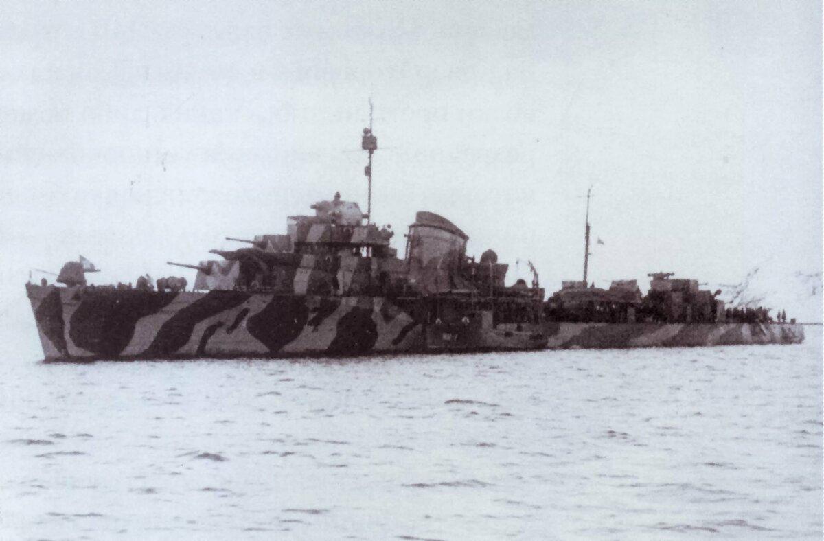 фото советских боевых кораблей времен вов известные голошейки куры