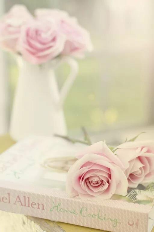 ванильные картинки с розами нужно знать