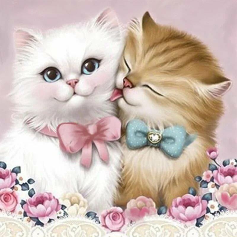 Красивые открытки кошках