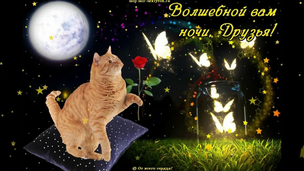 сладких снов волшебные картинки качестве насадки