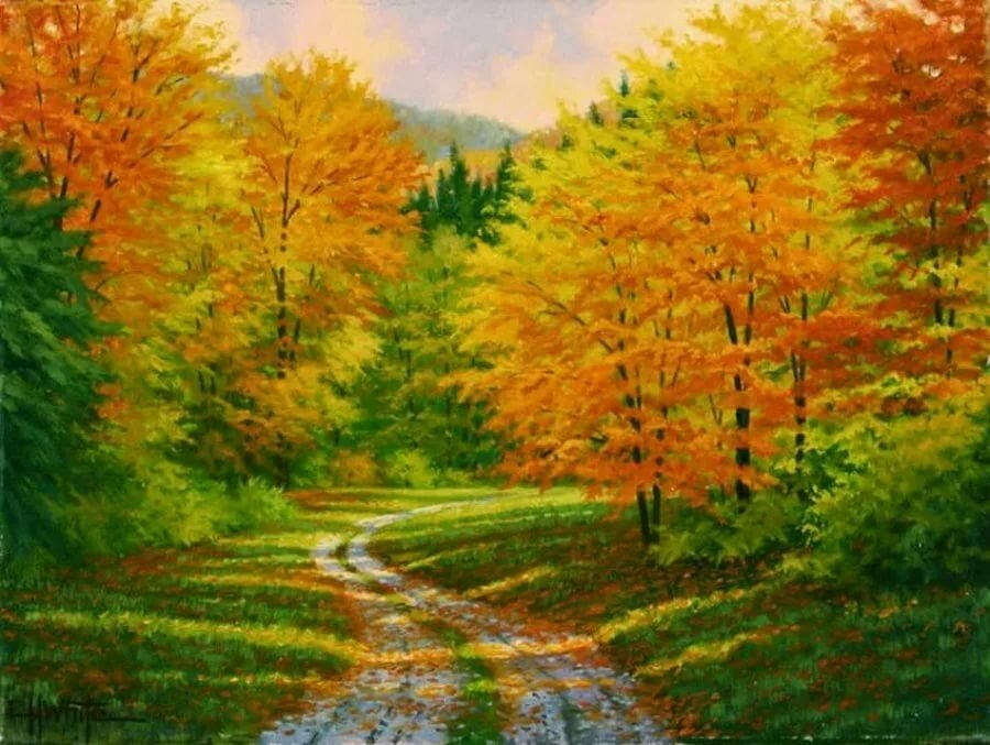 Статусы картинками, осенний лес картинки для детей нарисованные