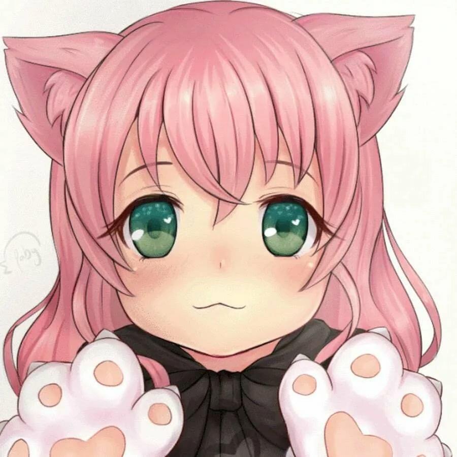 Картинки котиков милых и няшных аниме девушки