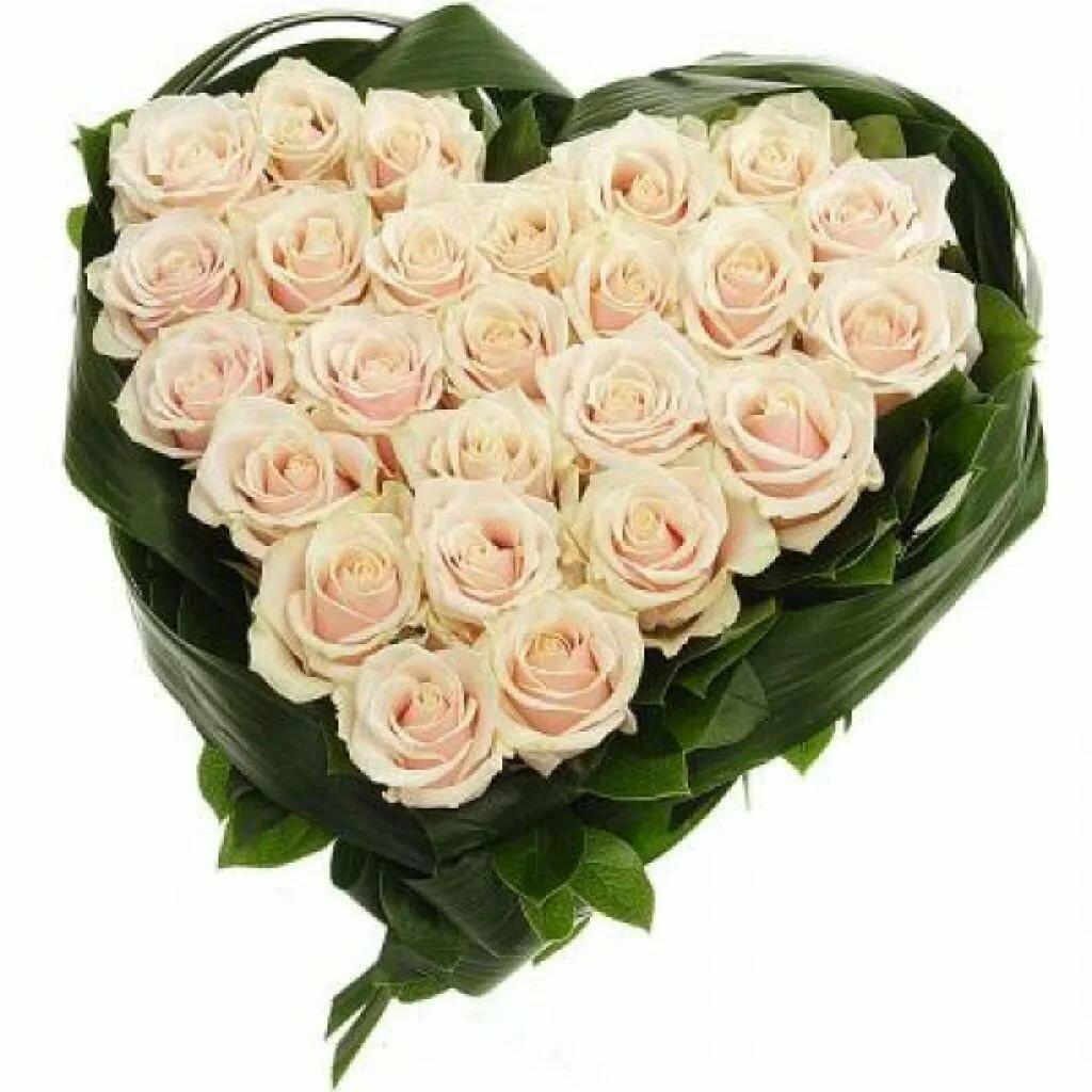 Сентября самодельные, картинки с белыми розами для любимой