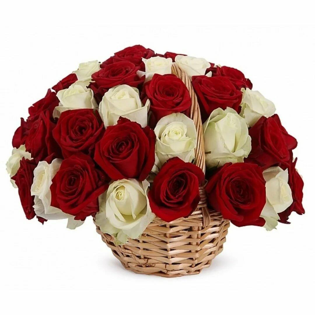 Букет роз с доставкой киев, кремовыми белыми розами