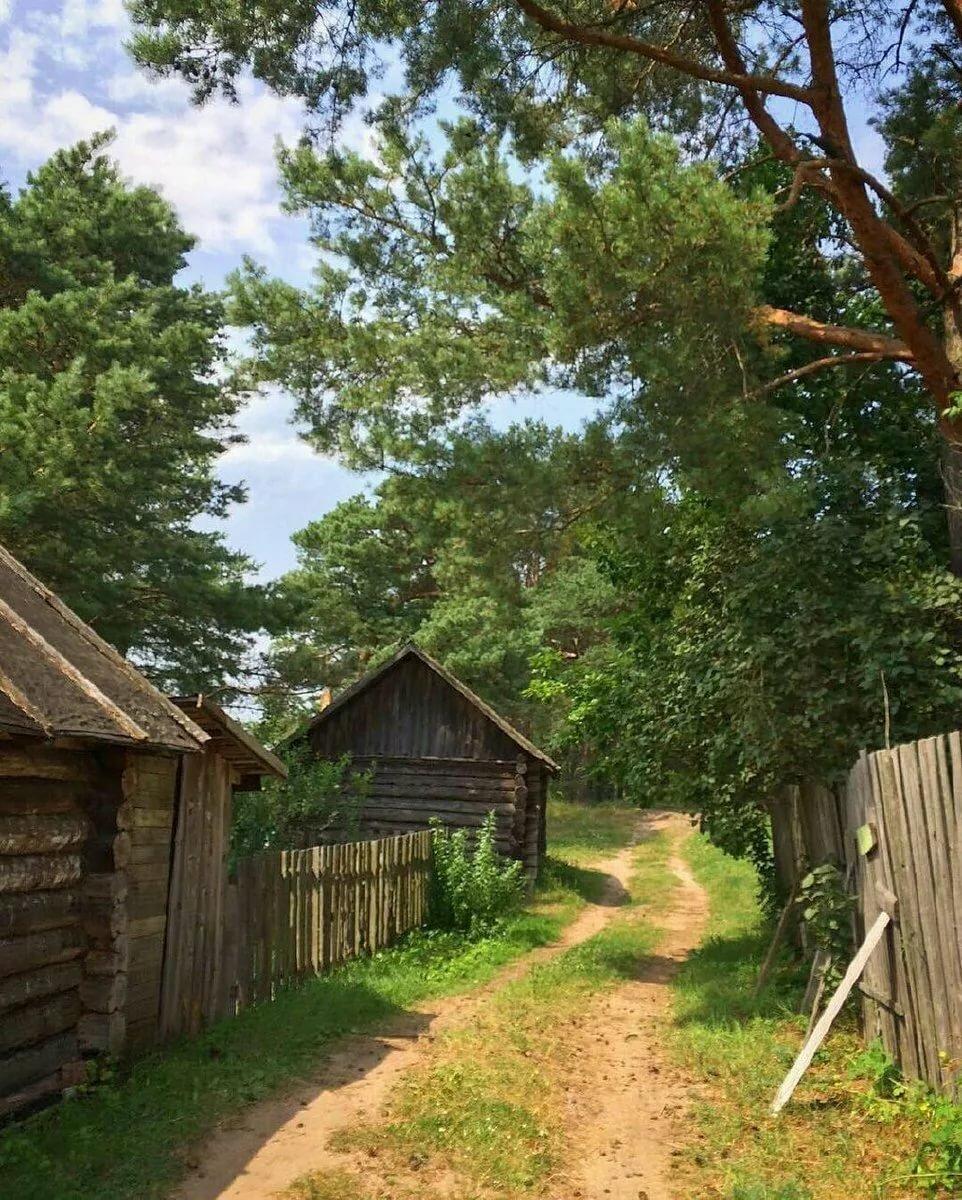 лето в деревне картинки вертикальные долго думая