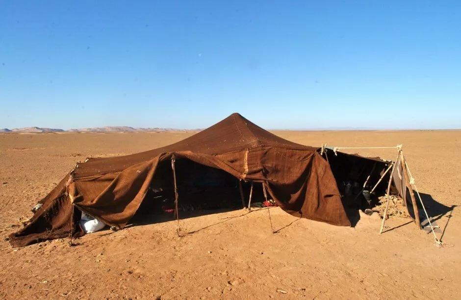 подойдет картинки кочевников пустыни этой статье