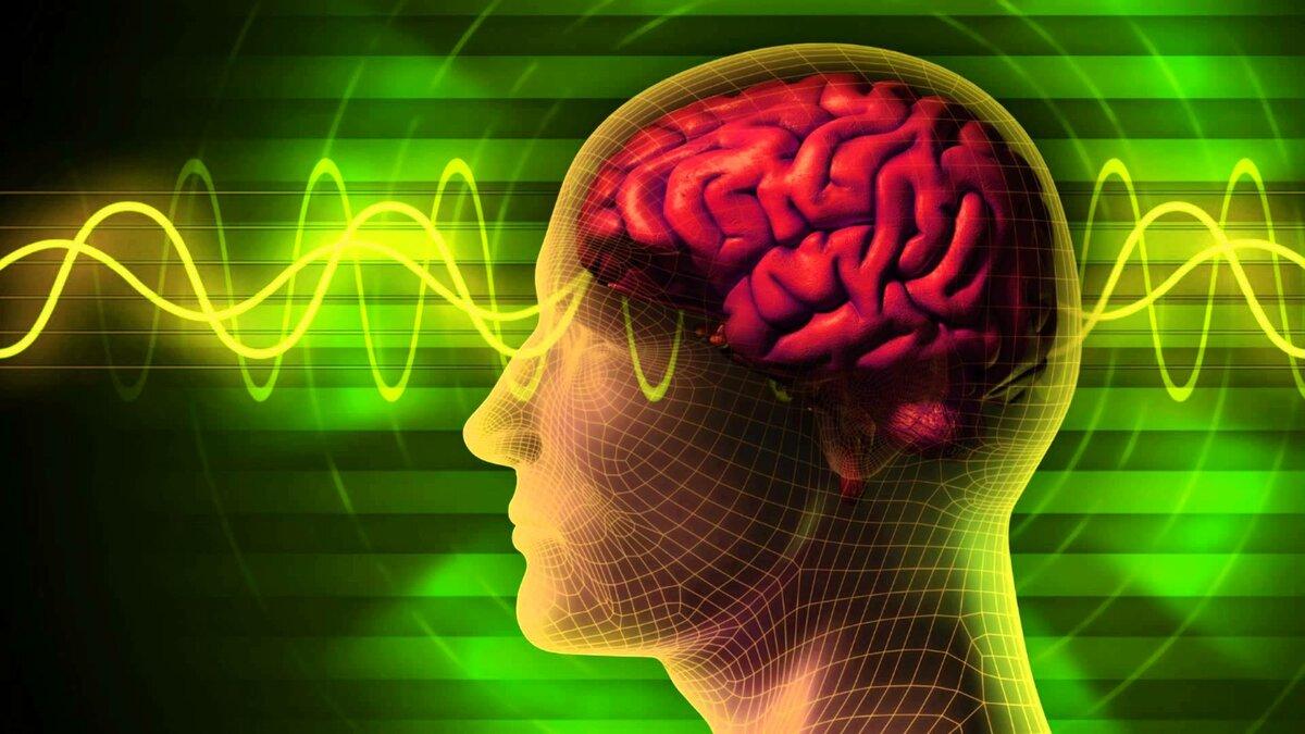нервно психологический мозг картинки фотографии видео
