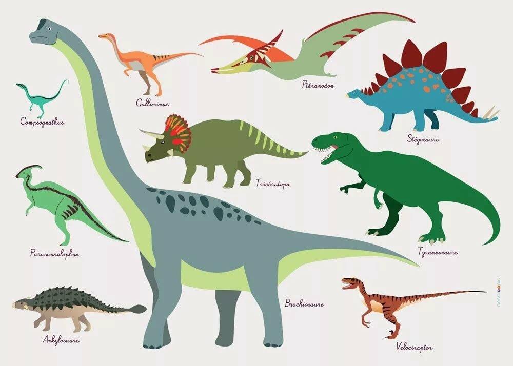 Надписью болела, виды динозавров в картинках