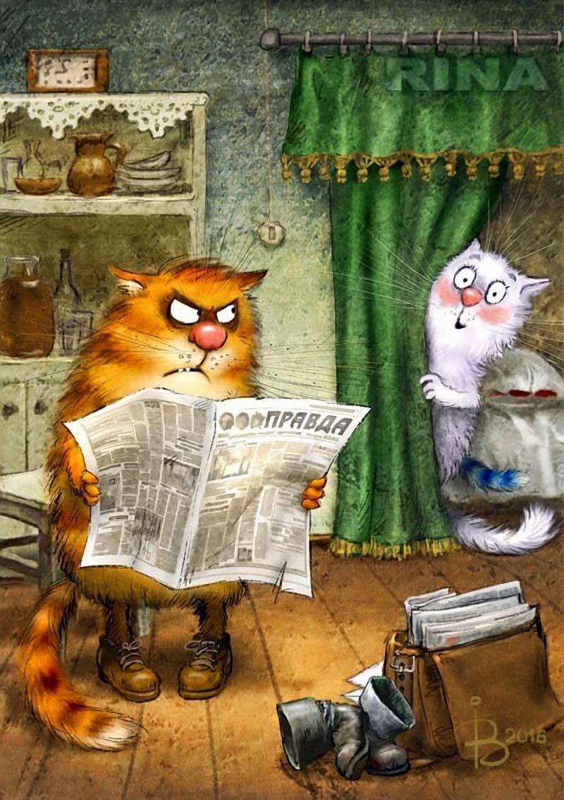 Днем российской, веселые открытки про котов