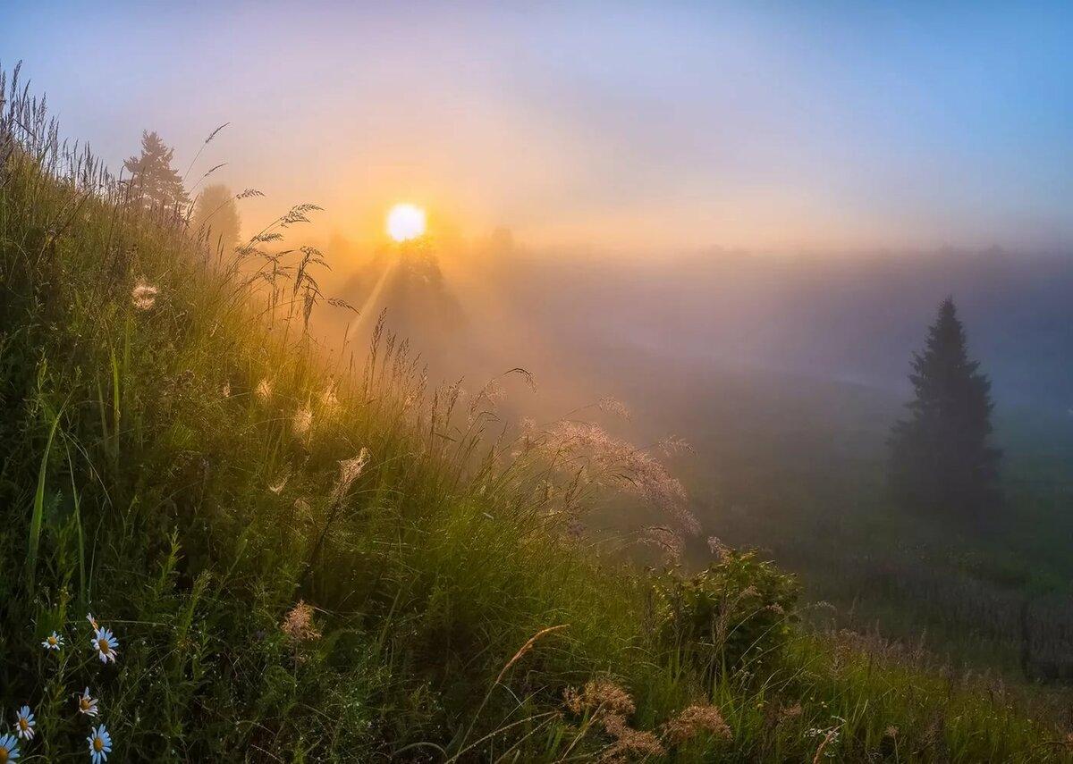 доброе утро картинки рассветы летом для