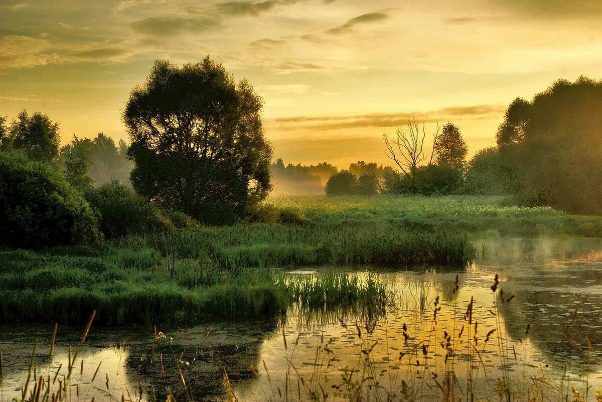 июльский пейзаж фото как правило