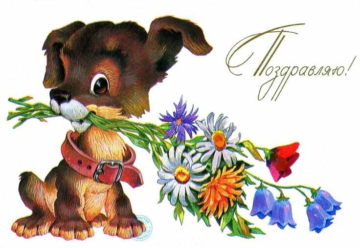 С днем рождения собака открытка, днем