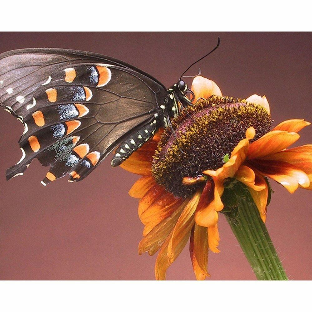 Поздравлением крещением, красивые картинки цветов и бабочек с анимацией