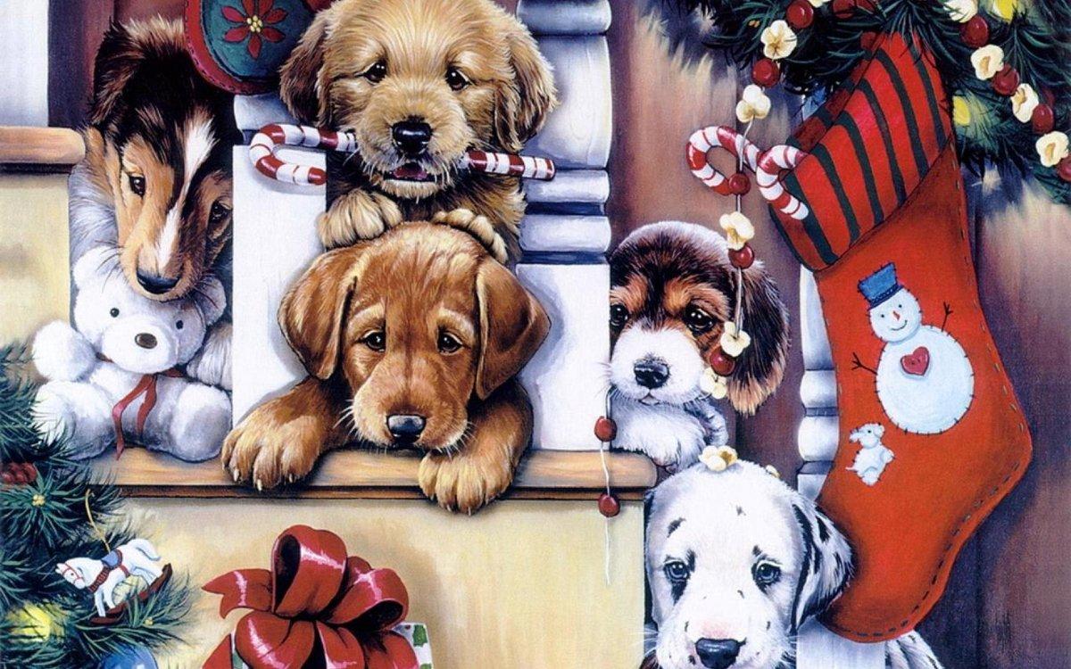 Открытка с собаками на новый год, пейзаж картинки рабочий