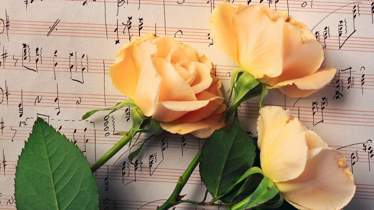 Красивые картинки и музыка к ним, д.р поздравительные открытки
