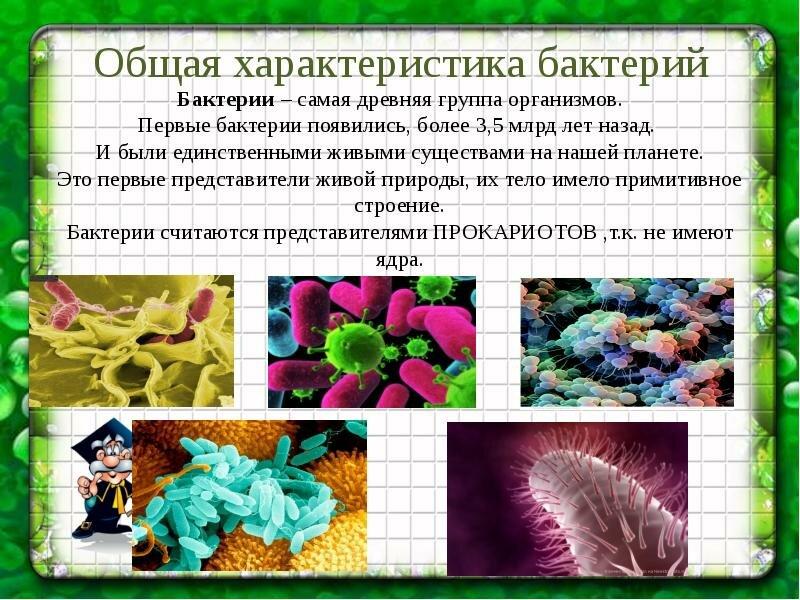 Картинки проект биология