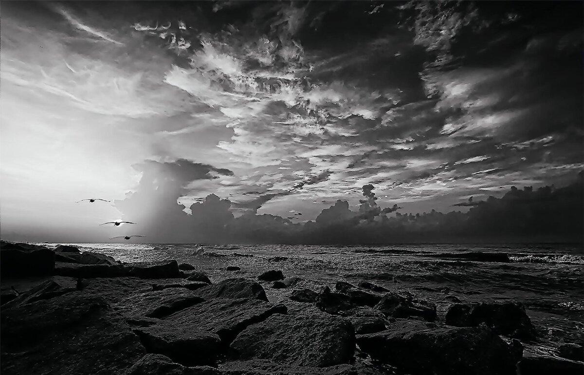 Черно белые картинка