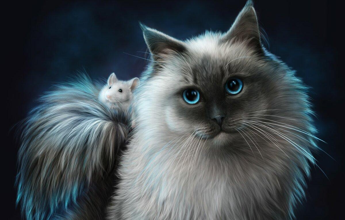 Фотки рисунки котов