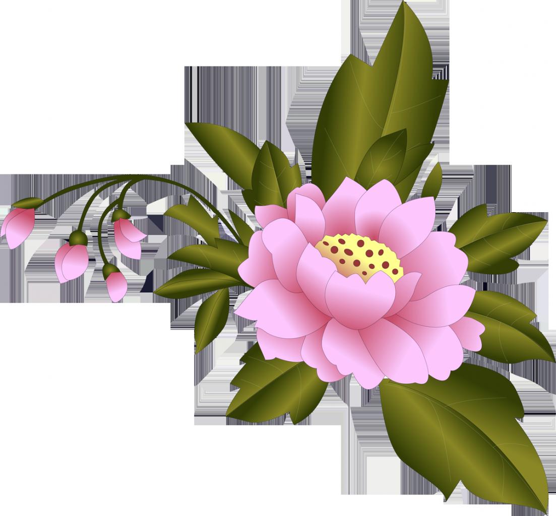 картинки одиночных цветов для оформления двадцать восемь