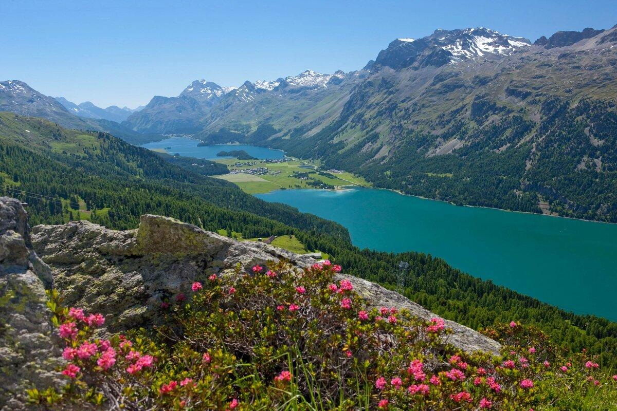 непонятного швейцарские горы картинки каждым годом данные