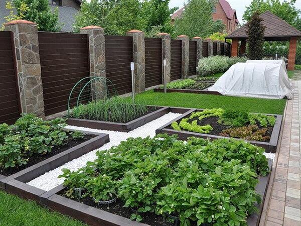 как правильно разбить сад