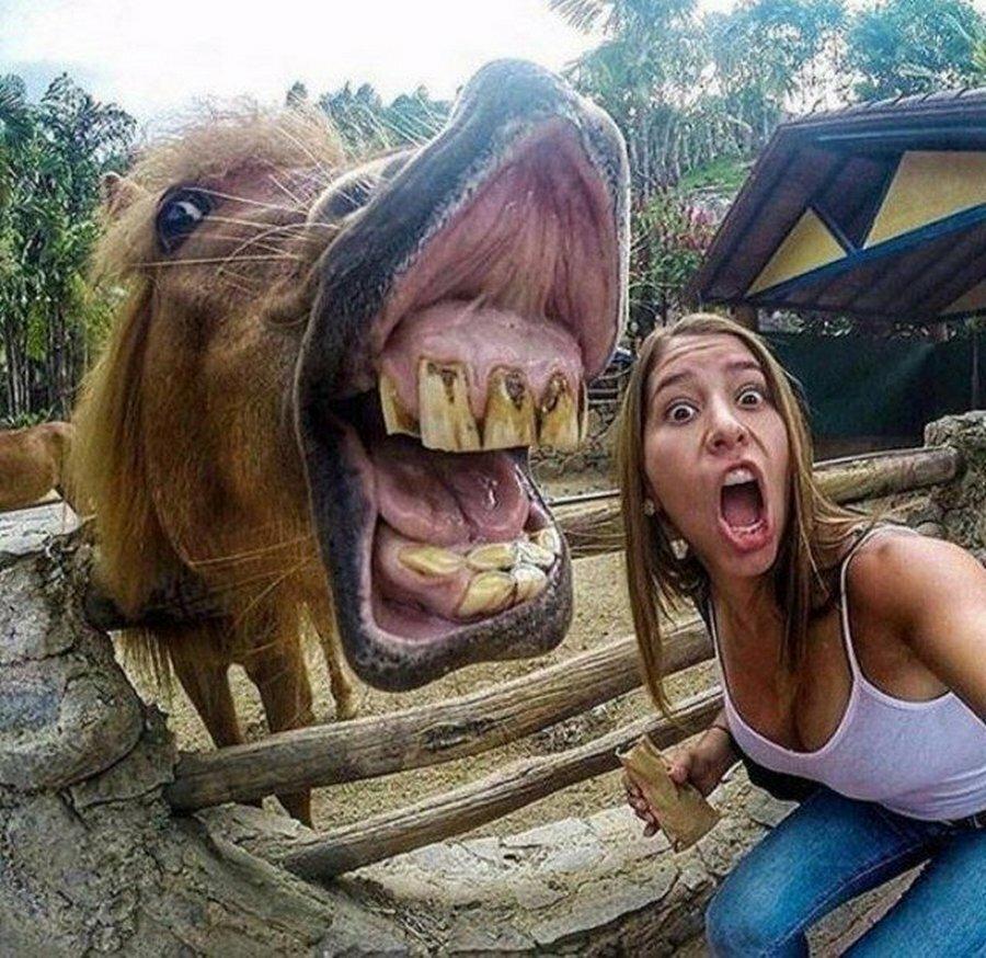 Юбилей, самые смешные в мире картинки про людей