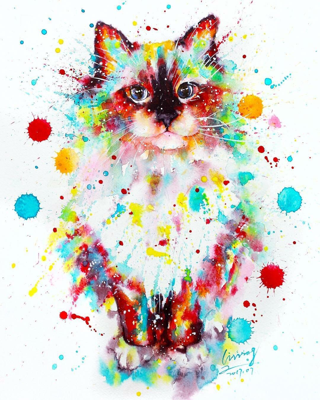 Картинки кошки в краске