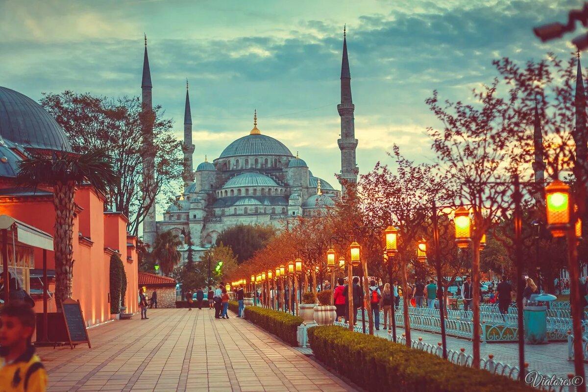 Стамбул открытка, розы для лены