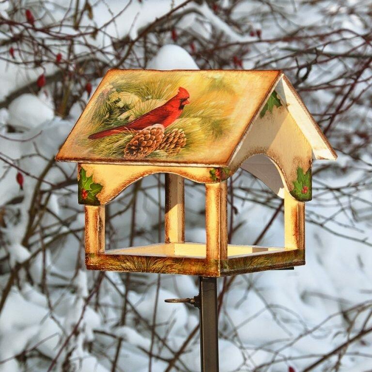 древесина картинки кормушек и скворечников для птиц певица фото, биография