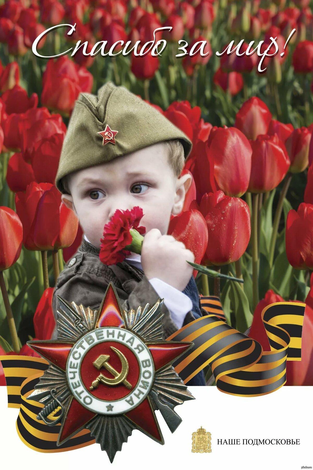 Поздравить с девятым маем задуматься о восьмом апреля