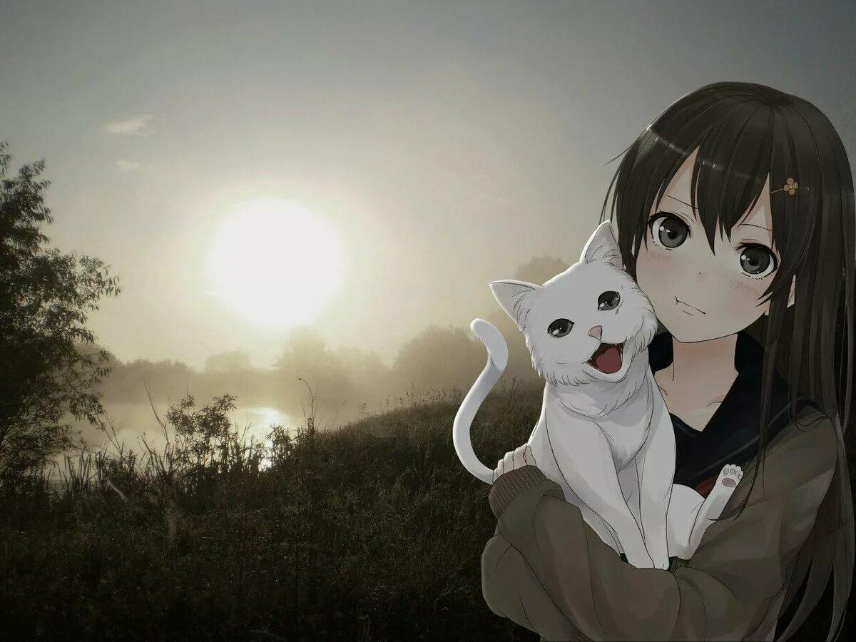 Картинки с котами аниме, днем смеха