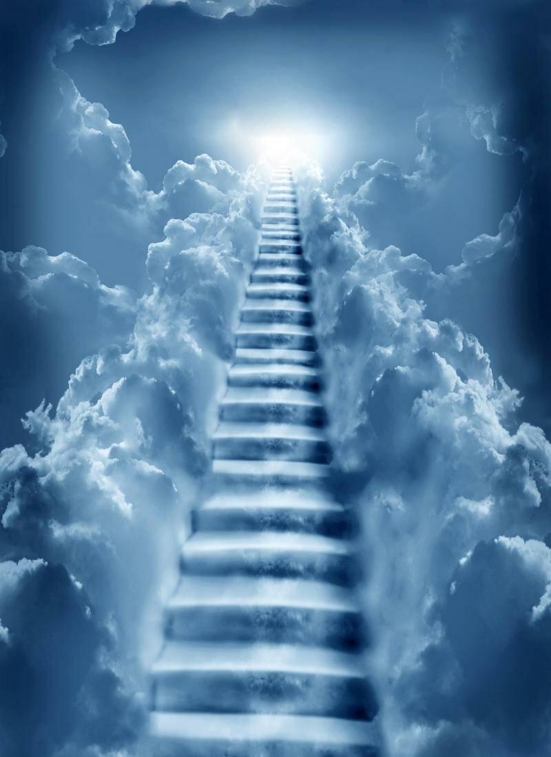 Смешные картинки лестница в небеса, открытки