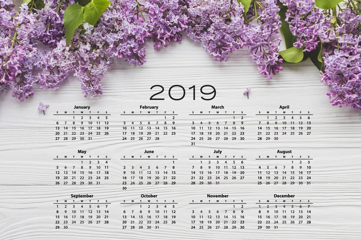 как яндекс картинки календарь 2019 эффективная работа вполне
