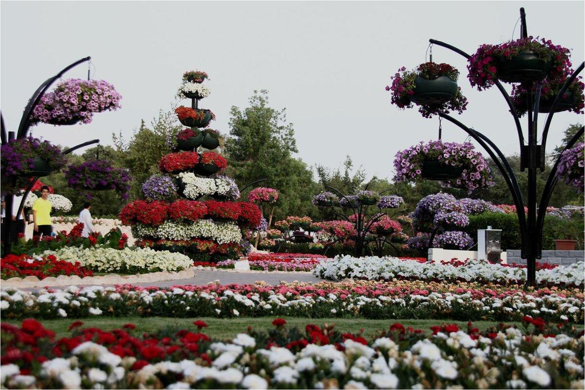 Купить самые красивые цветы в мире фото