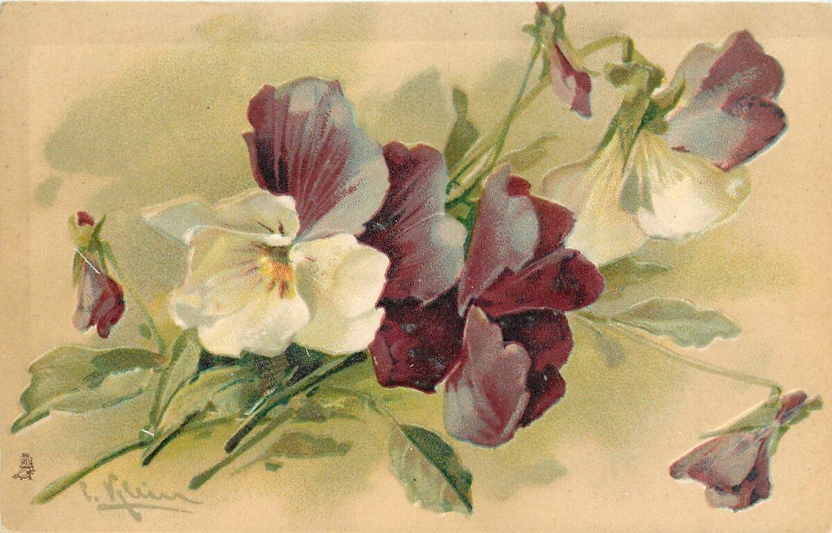 Акварельные открытки катарины кляйн