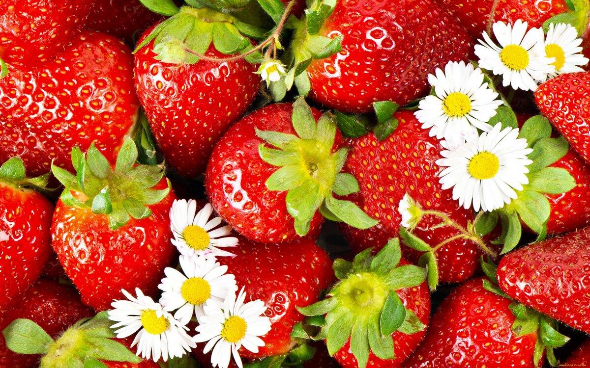 Картинки на рабочий стол лето фрукты на весь экран, байкерам