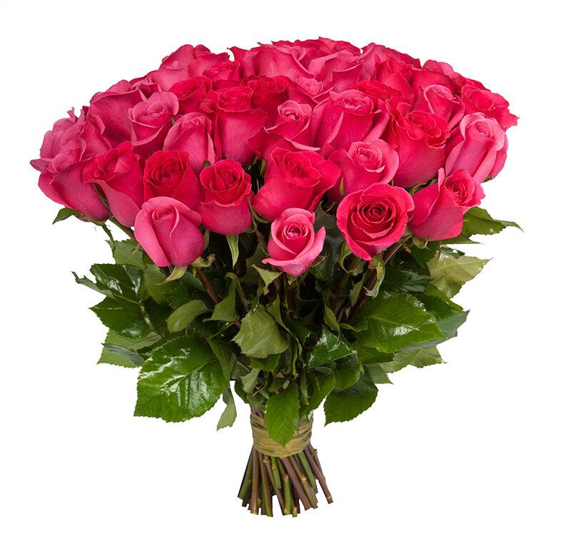 Картинки шикарные букеты роз, смешные осень мышка