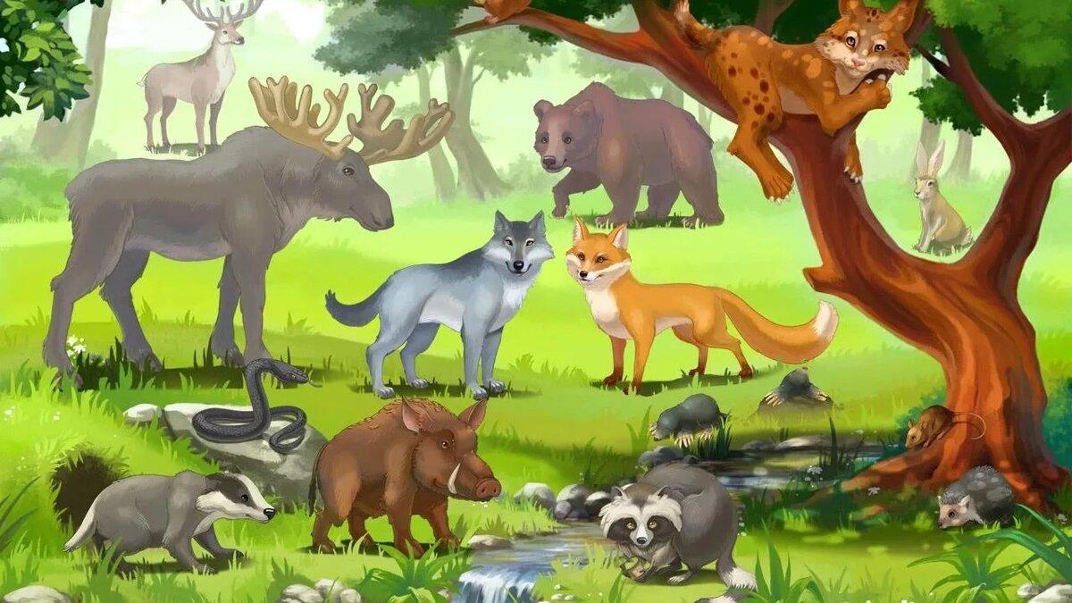 Картинки дикие животные для детей