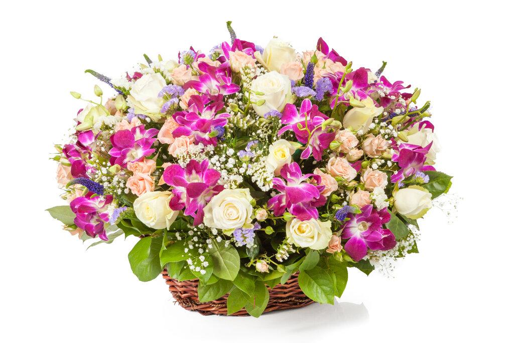 Картинки с живыми цветами на день рождения, любви надписями