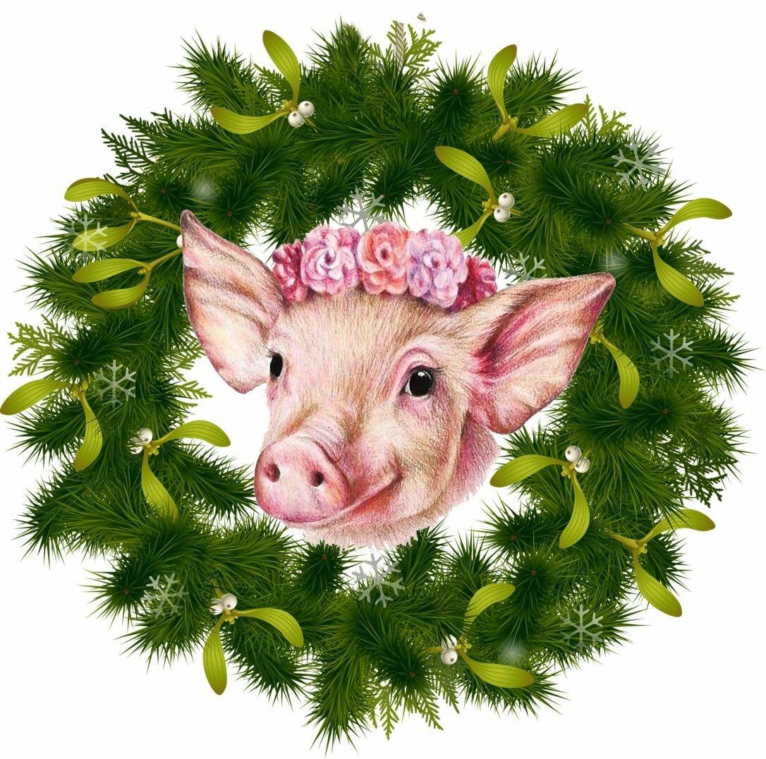 Прикольные картинки со свинками на новый год, класс открытки платочками