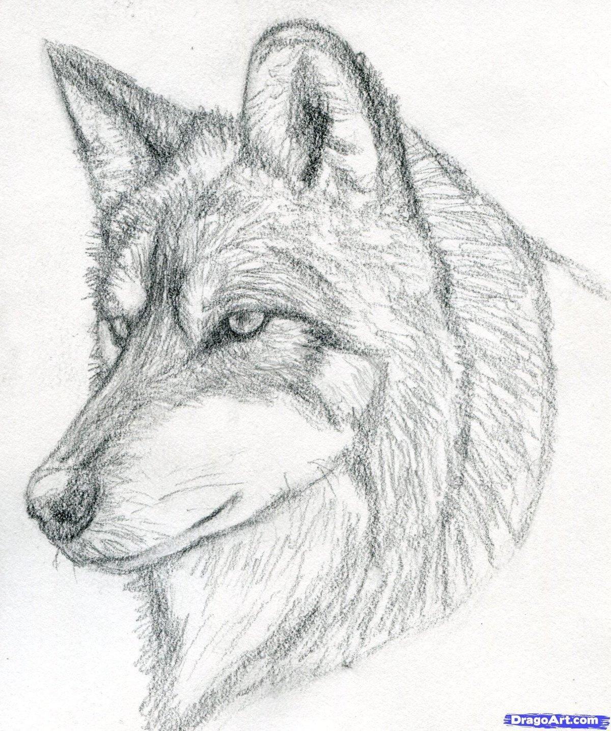 Картинки рисовать карандашом