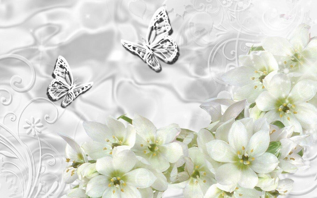Обои на телефон в белом цвете