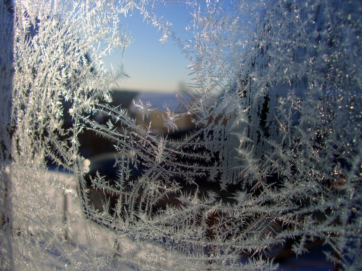 Зимняя сказка иней красивые картинки