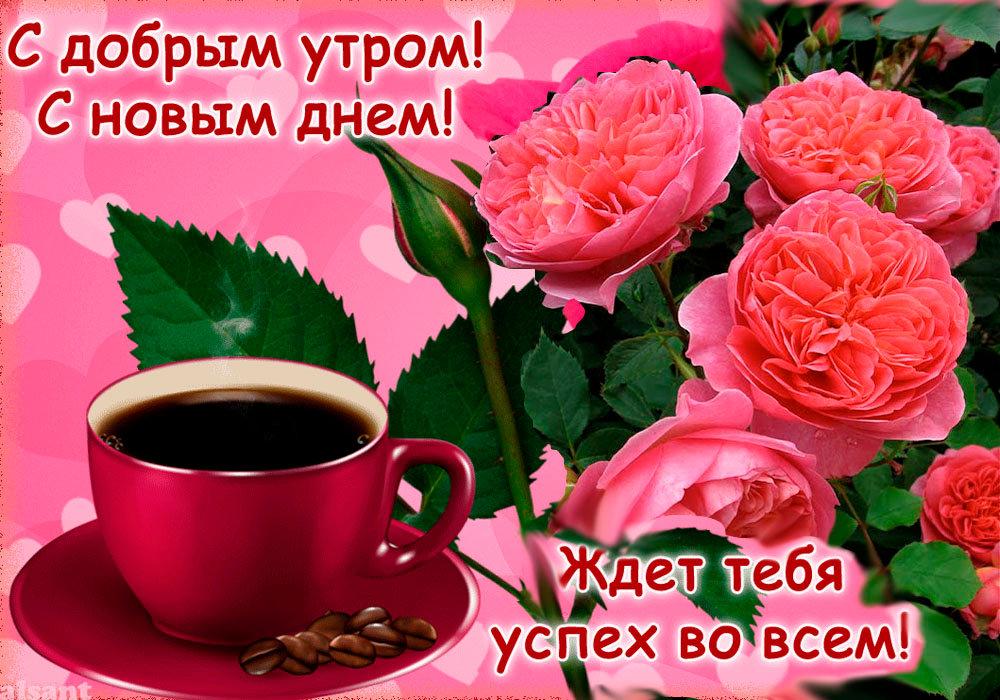 Самые красивые открытки доброе утро хорошего дня
