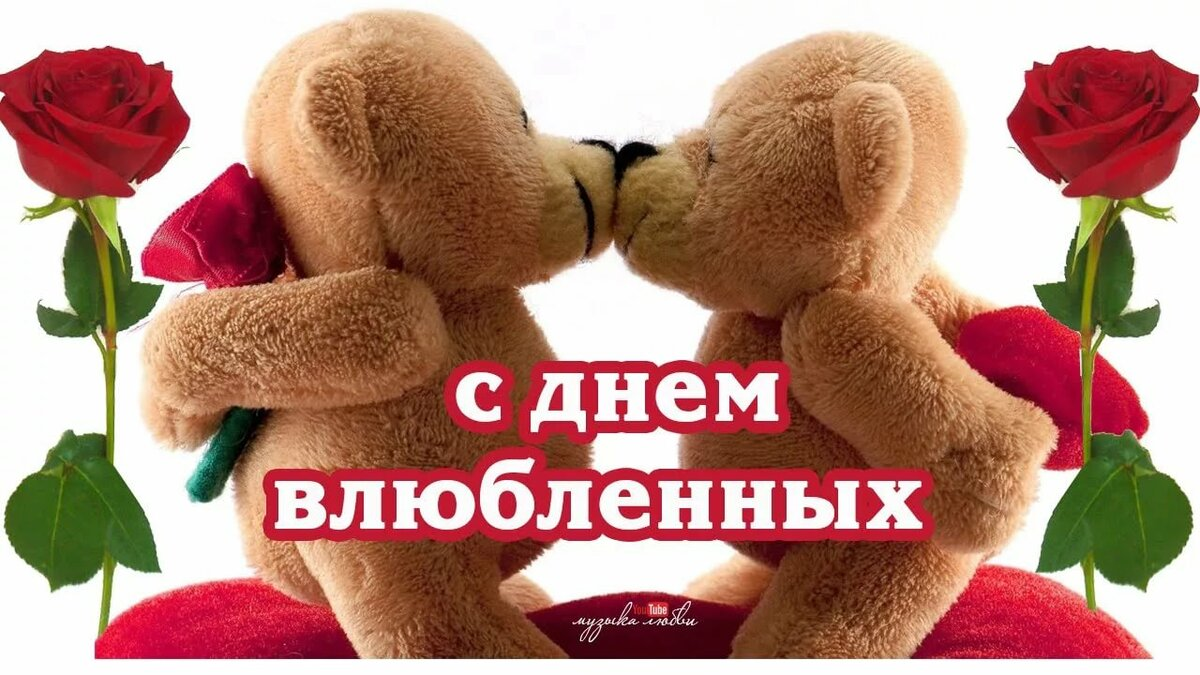 Зверей, открытки видео с днем влюбленных 14 февраля