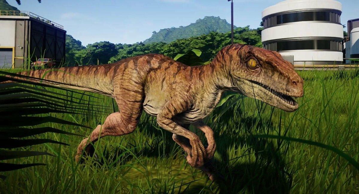 Картинки динозавров юрского периода велоцераптора