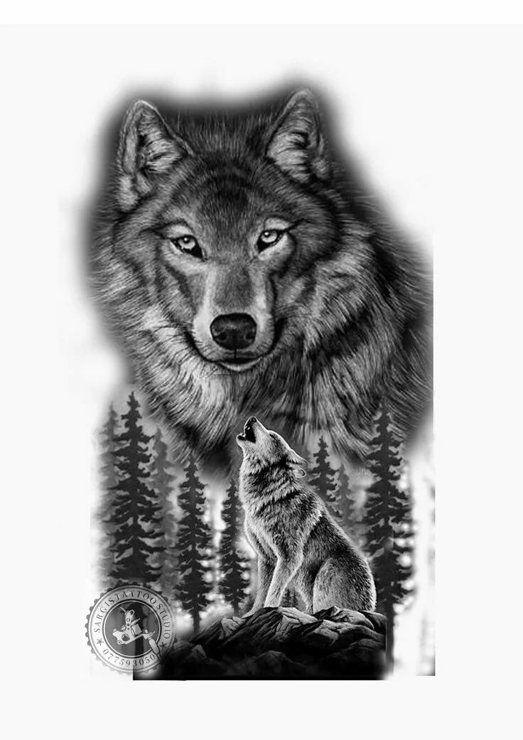Картинки для мужчин волк, вертолетик картинки